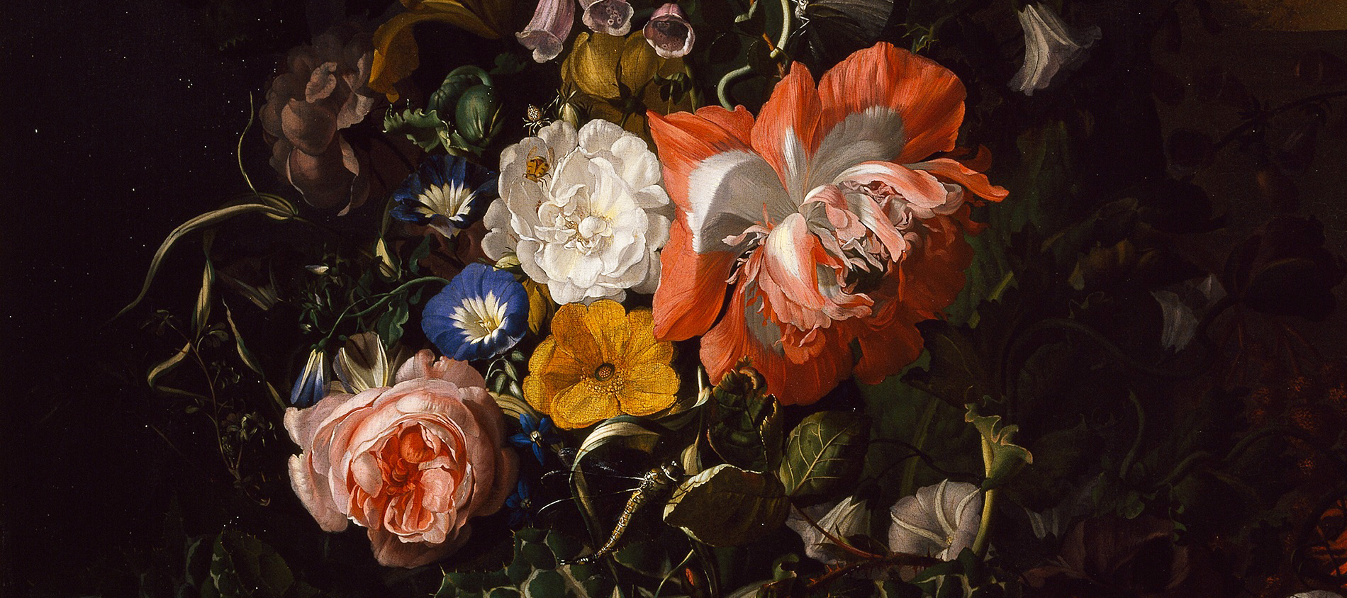 Detail: Roses, Convolvulus, Poppies and other flowers in an Urn on a Stone Ledge by Rachel Ruysch